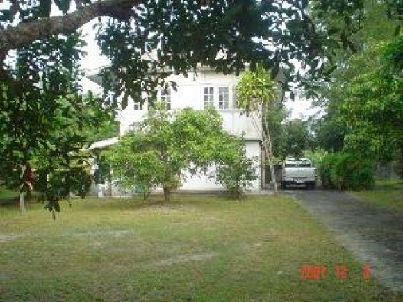 ต้องการขาย (For Sale) Detached House ,2 Storeys,2 Rai in Chang Mai Thai land Special Price 1.6 M.THB