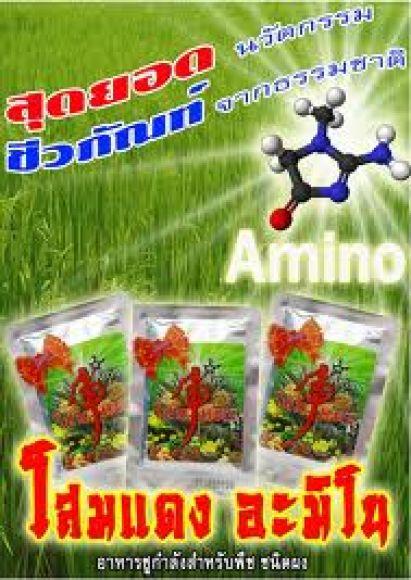 โสมแดงอะมิโนอาหารชูกำลังพืชชนิดผง สุดยอดชีวภัณฑ์นวัตกรรมจากธรรมชาติ กระตุ้นการเจริญเติบโตและฟื้นฟูพื