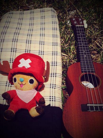 กระเป๋า ukulele น้ำตาล สก็อต