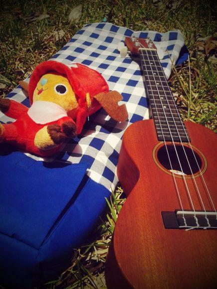 กระเป๋า ukulele น้ำเงิน สก็อต