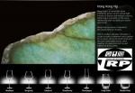 แก้วแชมเปญ,Flute,Champagne,รุ่น 1LS04CP09E,Hongkong Hip,Lucaris,ความจุ 9 1/2oz.(270 ml.),แพ็ค 6/24ใบ