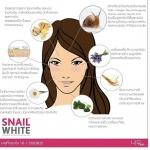 Snail White Cream ครีมหอยทากยอดฮิต
