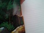 เงาะป่า / ภาพและคำบรรยายโดยเหม เวชกร