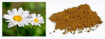 INSECTICIDE FLOWER EXTRACT 1 LITRE